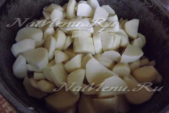 Пласт картофеля