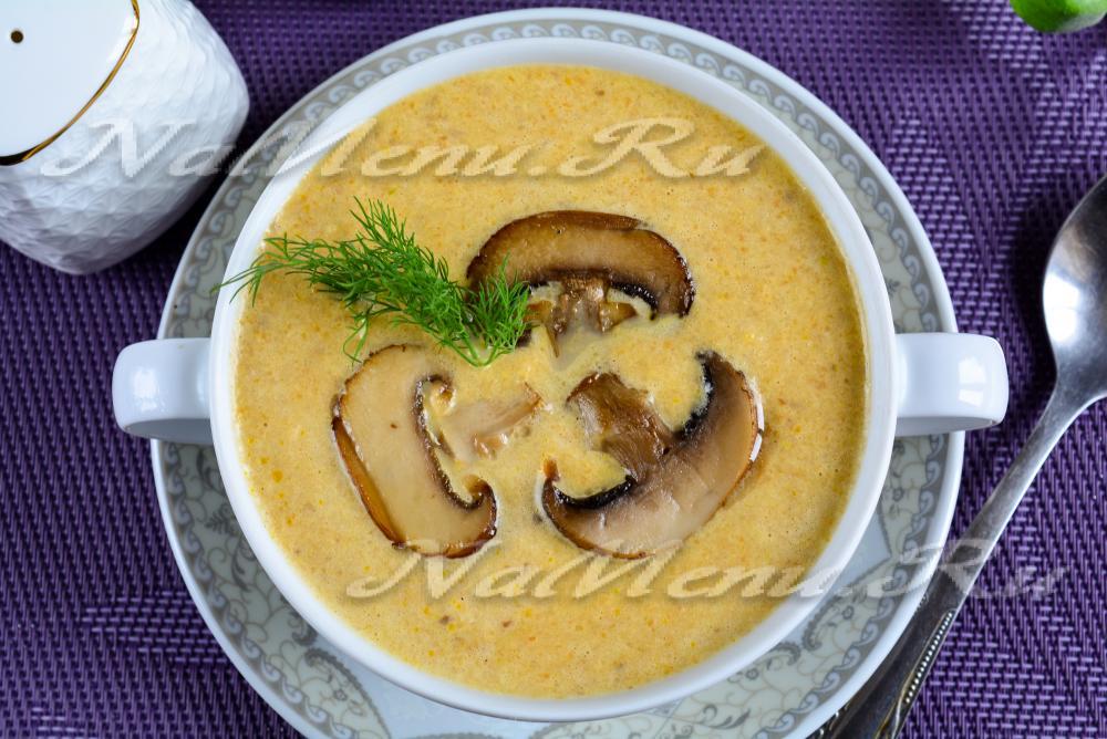 Грибной суп рецепт из замороженных грибов на курином бульоне