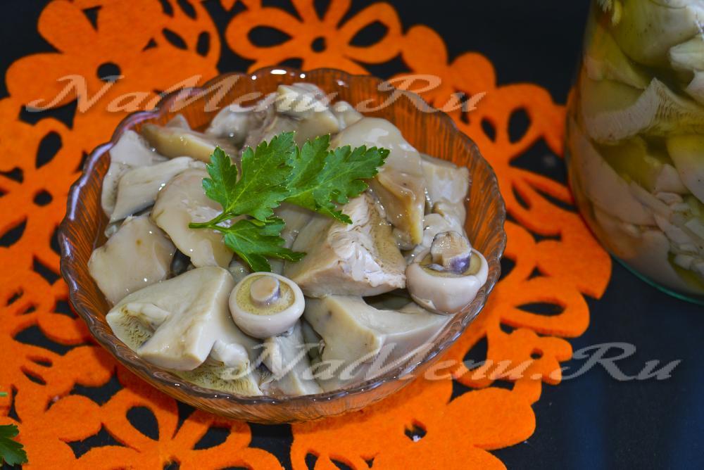 Рецепты мариновать грибы синяя ножкаы 4