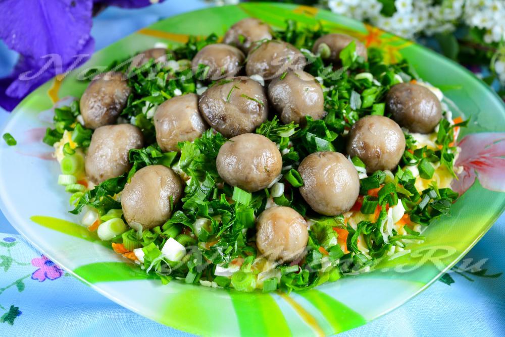 Ооо грибная поляна салат фото