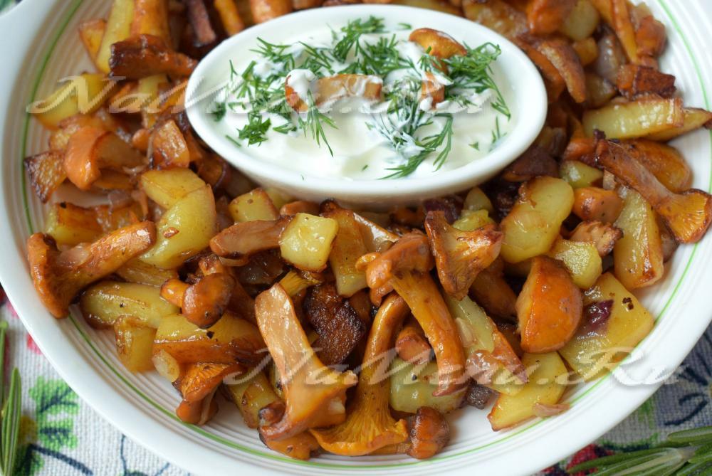 Рецепт лисички с картошкой жареные в сметане