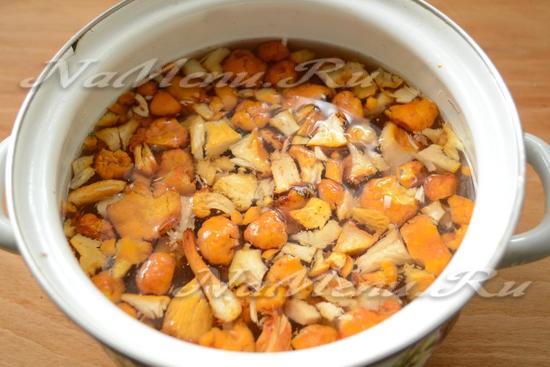 грибной суп рецепт с фото пошагово кастрюля 3 литра