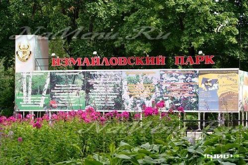 День России в Измайловском парк