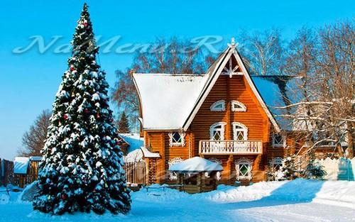 Новый год в дом отдыхе недорого