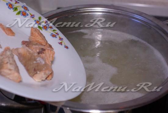 добавить рыбу в бульон