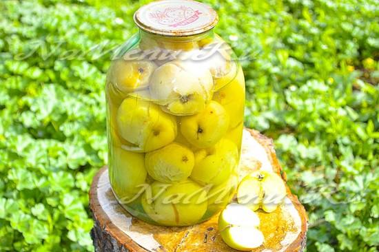 Моченые яблоки на зиму, простой рецепт в банке без стерилизации