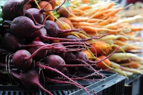 Благоприятные дни для уборки моркови