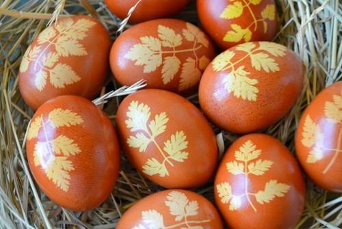 5 способов покраски яиц в луковой шелухе без трещин