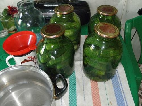 Маринованные огурцы - рецепт на зиму (хрустящие) на 3 литровую банку